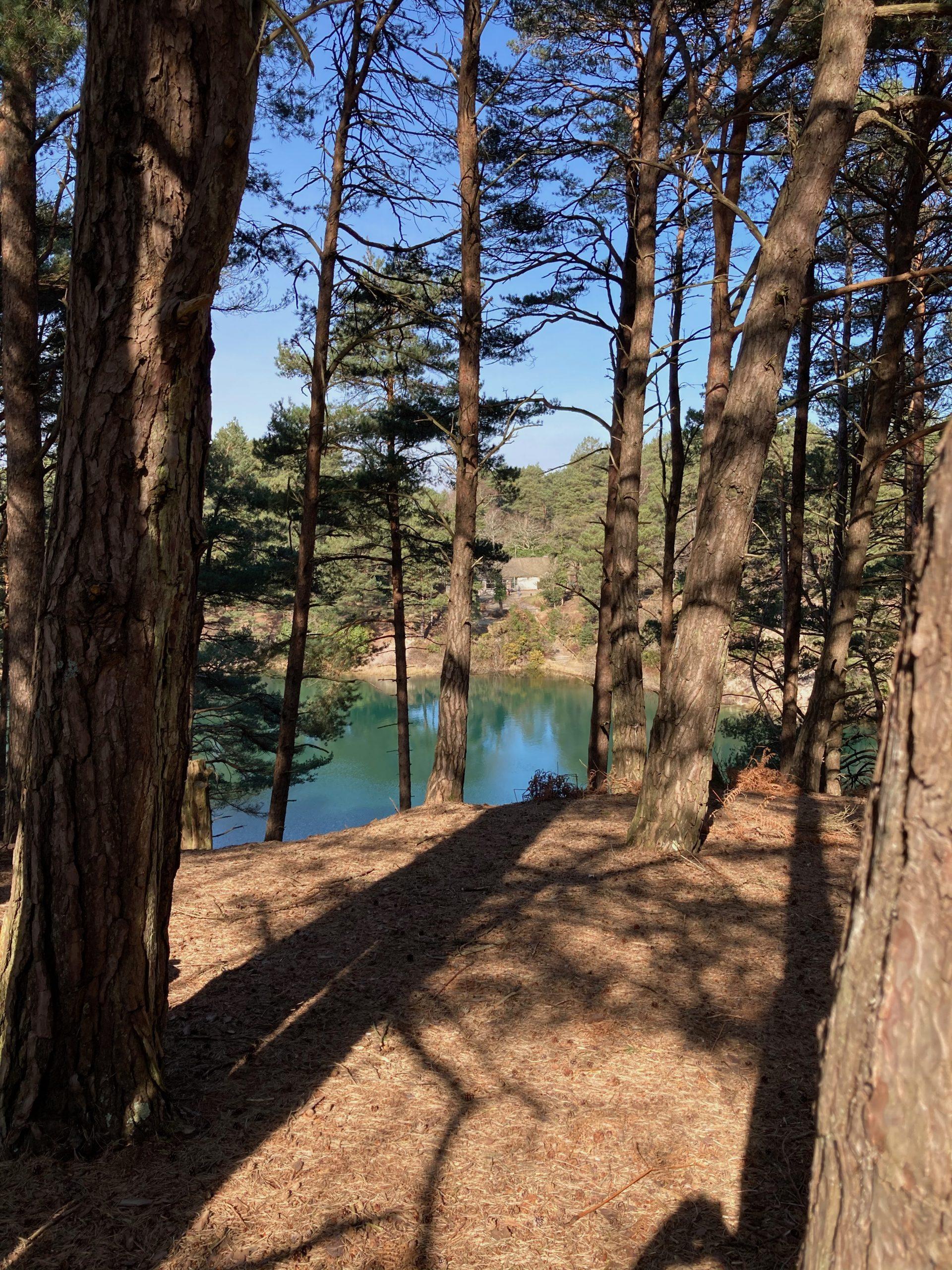 The Blue Pool Through Tree 3